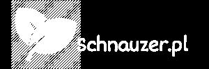 schnauzer.pl